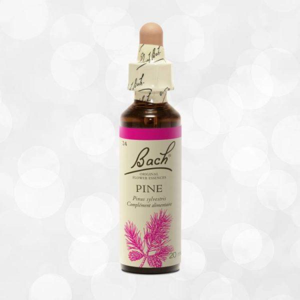 Fleur de Bach Original Pine Pin Sylvestre